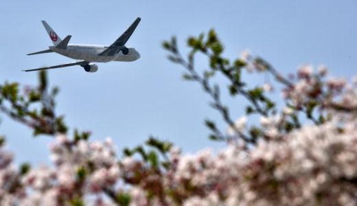 【ポイント3重取り】JAL航空券を買うなら楽天リーベイツが必須 ー JGC修行にも